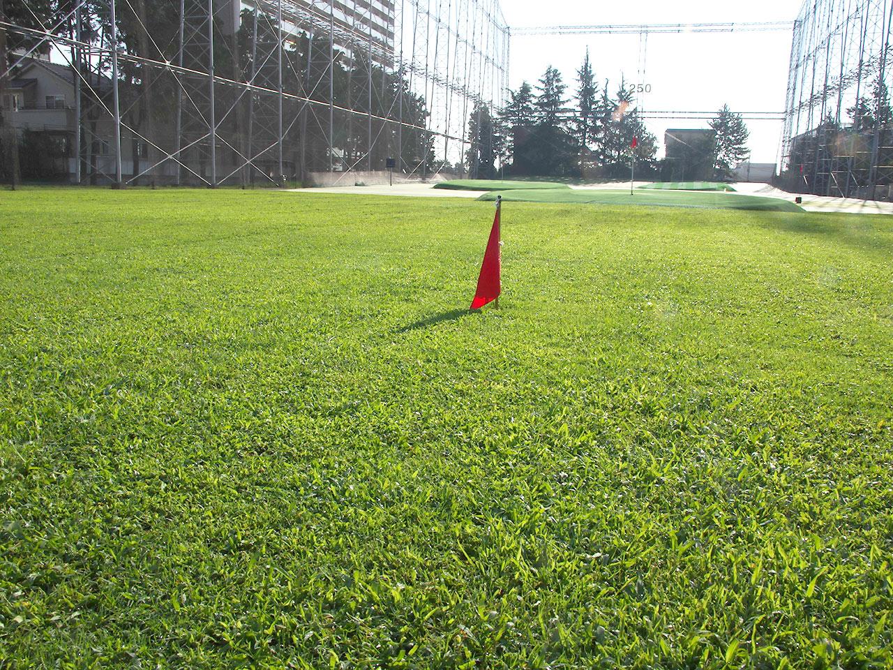天然芝が美しいフェアウェイ。その奥にはフラットな人工芝が広がります。